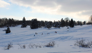 Winterevents listing